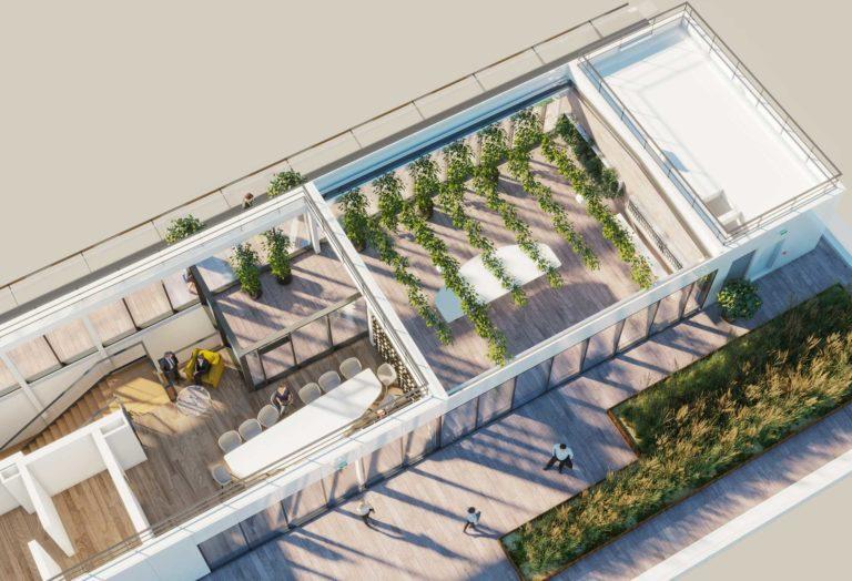 Vue 3D : Roof-top Invivo